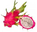 Pitaya Vermelha - Hylocereus - 20 un.