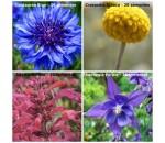 Kit Flores - 4 variedades