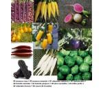 Kit 10 variedades de hortaliças raras