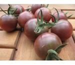 Tomate Black Cherry - Solanum lycopersicum