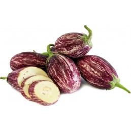 Berinjela Raiada - Solanum melongena