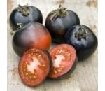 Tomate Indigo Rose - Solanum lycopersicum