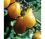Tomate Pera Amarelo - Solanum lycopersicum