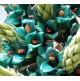 Puya Azul - Puya berteroniana