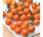 Tomate Cherry Laranja - Solanum lycopersicum